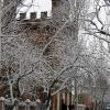 БГПУ - вид из зимнего парка им.П.П. шмидта